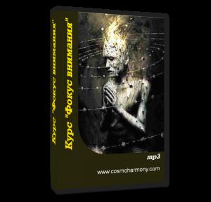 cover book focus vnimania