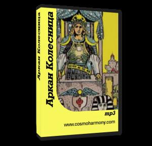 cover book Kolesnica
