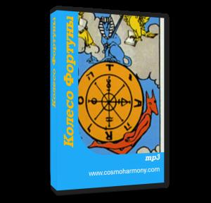 cover book Koleso Fortuni